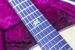 brook-guitar8