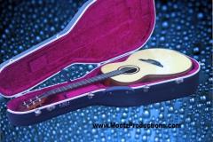 brook-guitar9